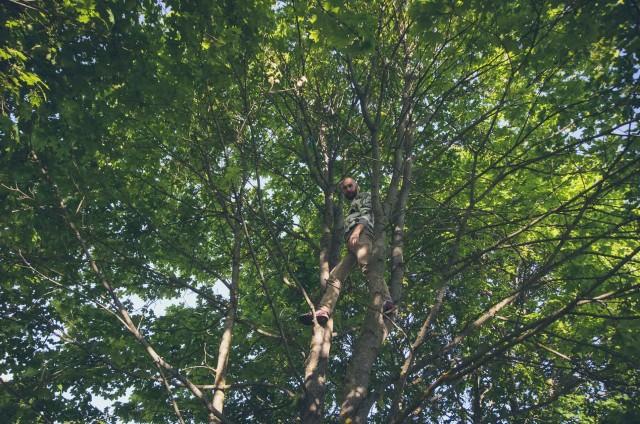"""Prie """"Alytaus tekstilės"""" kabarojomės medžiuose"""