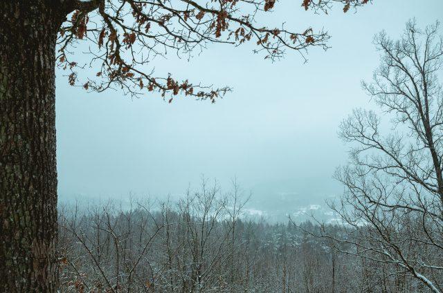 Puiki panorama skęsta vakaro migloje